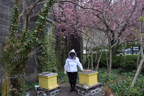 Woman in beekeeping outfit next to hives and trees